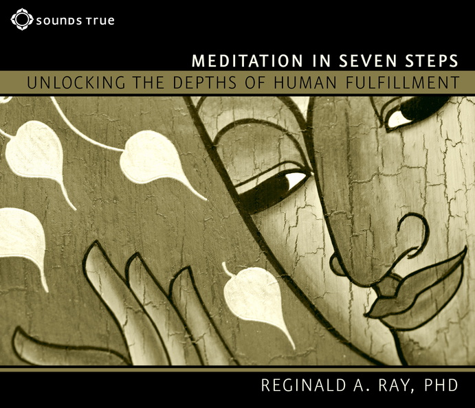 AW04449D-Meditation-Seven-Steps-published-cover.jpg