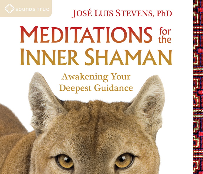 AW04021D-Inner-Shaman-published-cover.jpg