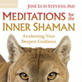 AW04021D Meditations for the Inner Shaman