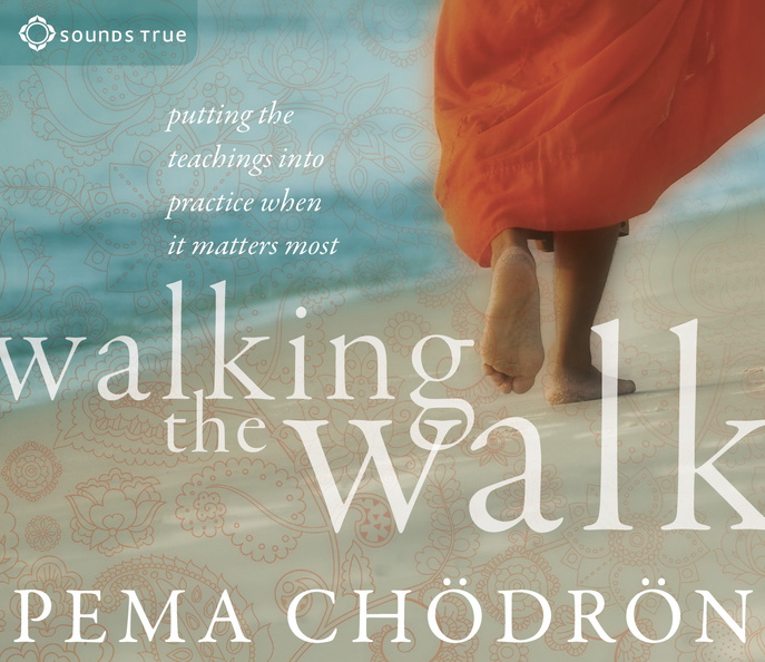 AW04204D-Walking-the-Walk-published-cover.jpg