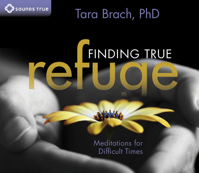 AW02716D-Finding-True-Refuge-published-cover.jpg
