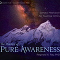 AF04807D The Practice of Pure Awareness
