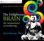 AF02034D The Enlightened Brain
