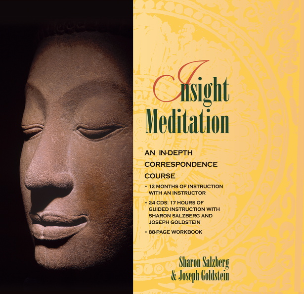 AF00874D-Insight-Meditation-published-cover.jpg