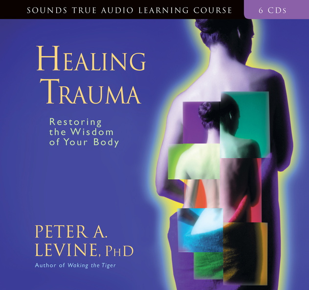 AF00941D-Healing-Trauma-published-cover.jpg