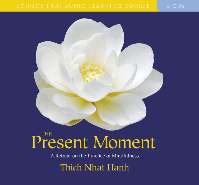 AF00760D-Present-Moment-published-cover.jpg