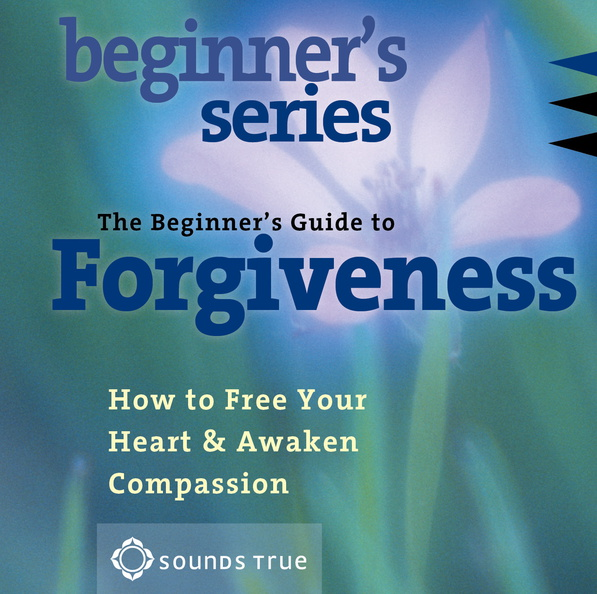 AW00656D-Beginner-Forgiveness-published-cover.jpg