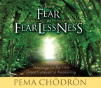 AW00742D From Fear to Fearlessness