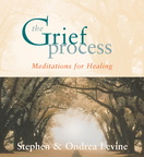 AW00437D The Grief Process