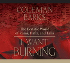 AW00488D I Want Burning