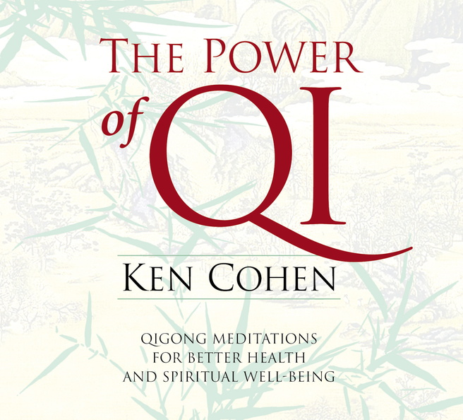 AW00500D-Power-Qi-published-cover.jpg