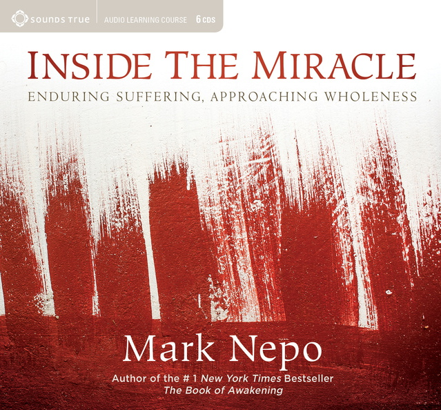 AB04298D-Inside-the-Miracle-published-cover.jpg