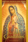 BK01223 Our Lady of Guadalupe