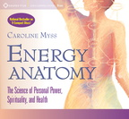 AW00533D Energy Anatomy