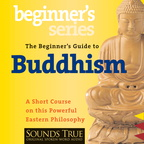 AW00534D The Beginner's Guide to Buddhism