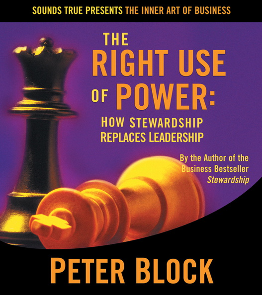 AW00569D-Right-Use-Power-published-cover.jpg