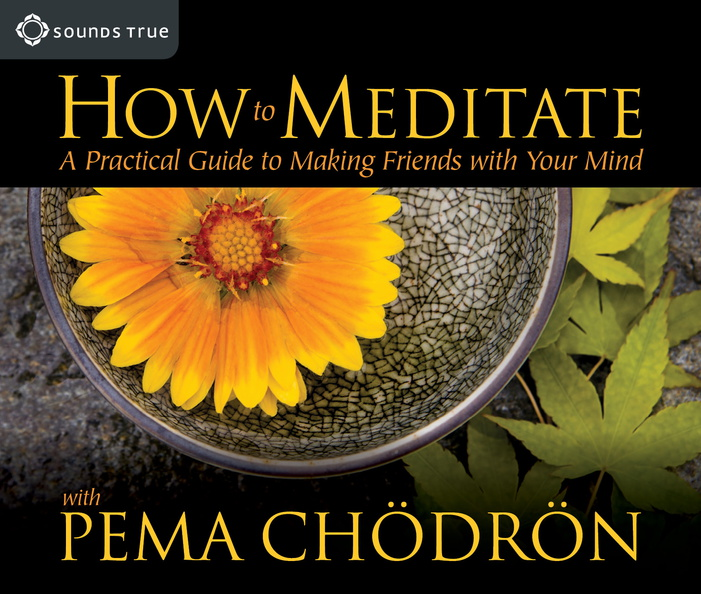 AW01222D-How-to-Meditate-published-cover.jpg