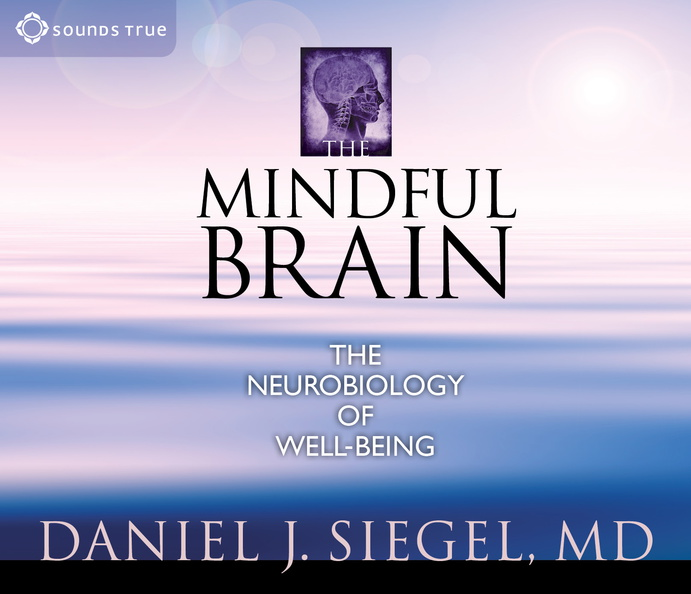 AW01260D-Mindful-Brain-published-cover.jpg
