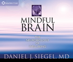 AW01260D The Mindful Brain