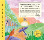 RC06403D Songbird Sunrise and Thunderstorm