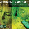 RC07112D Meditative Rainforest