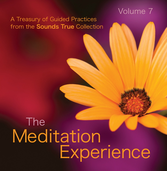 SW02025D-Meditation-Experience-7-published-cover.jpg