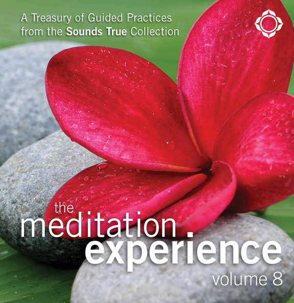 SW02452D-Meditation-Experience-8-published-cover.jpg