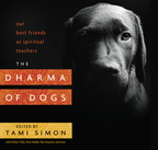 BK04830 Dharma of Dogs