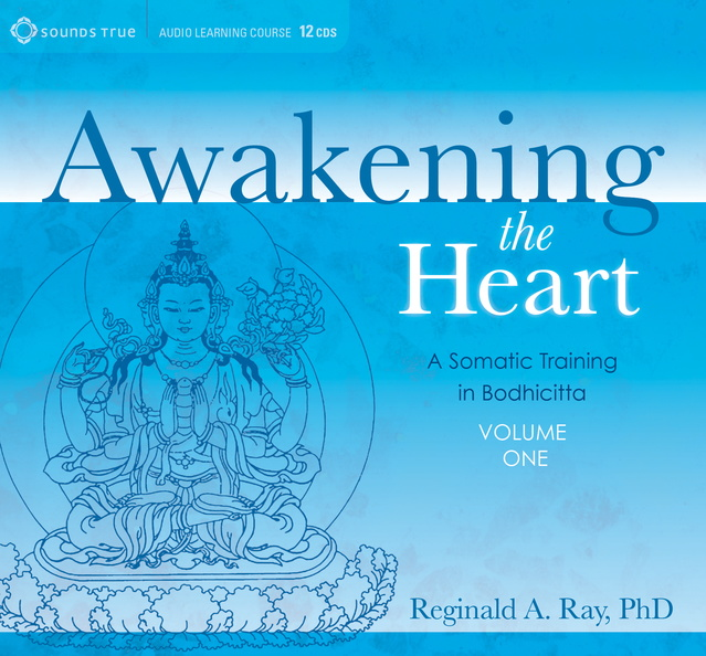 DD05320W,-Awakening-the-Heart-Published-Cover-Volume1.jpg
