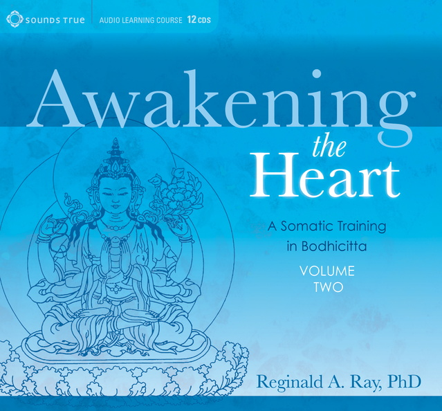 DD05321W-Awakening-the-Heart-Published-Cover-Volume2.jpg