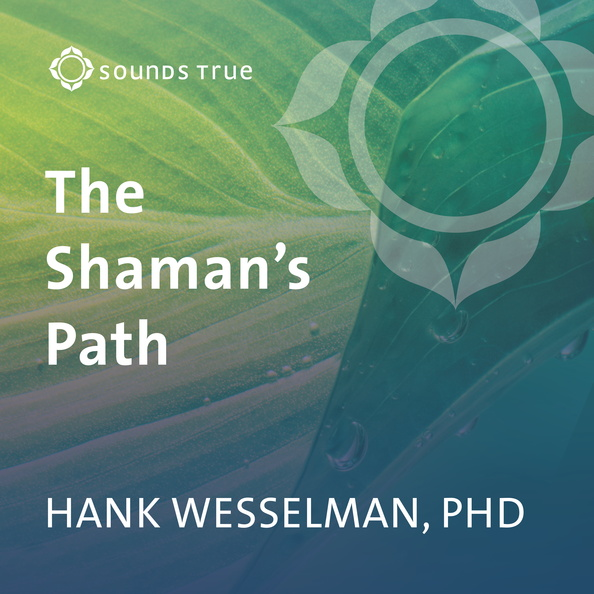 DD05334W-Shamans-Path-Wesselman-Published-Cover.jpg