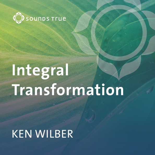DD05335W-Integral-Transformation-Wilber-Published-Cover.jpg