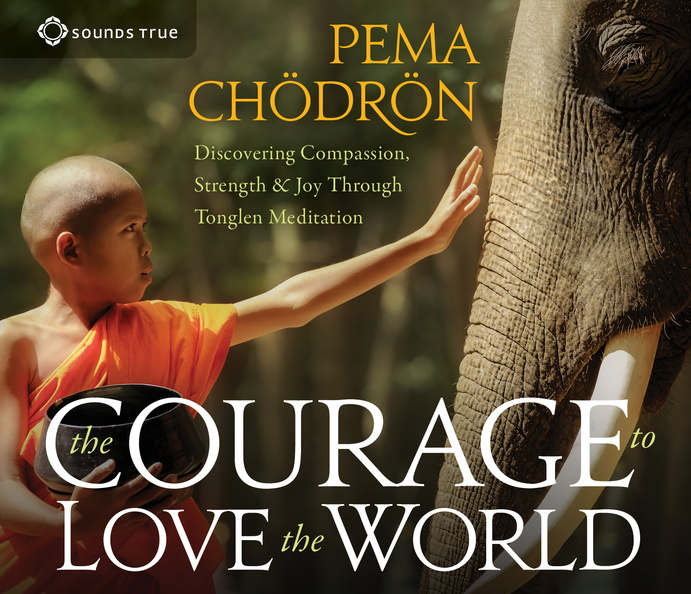AW05452D-Courage-Love-World-Published-Cover.jpg