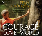 AW05452D The Courage to Love the World