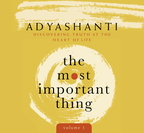 AF05528D The Most Important Thing Vol 1