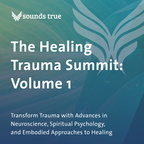 DD05836W The Healing Trauma Summit Volume 1