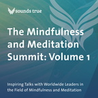 DD05817W The Mindfulness and Meditation Summit Volume 1