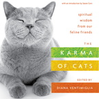 BK05628 Karma of Cats