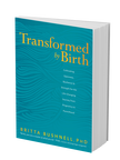 BK05866 Transformed by Birth 3D cover