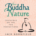 AF00059D Your Buddha Nature