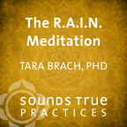 IM04263W The R.A.I.N. Meditation